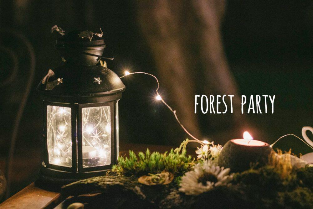生活提案|找尋冬日的精靈,辦一場森林裡的星空派對